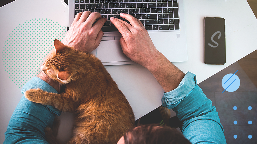Work from Home with Pets